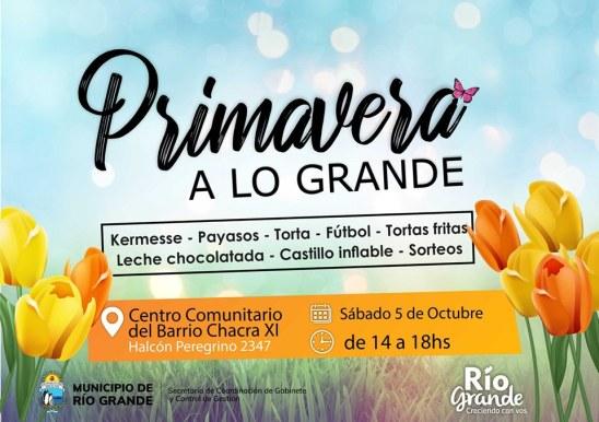 PRIMAVERA CCM